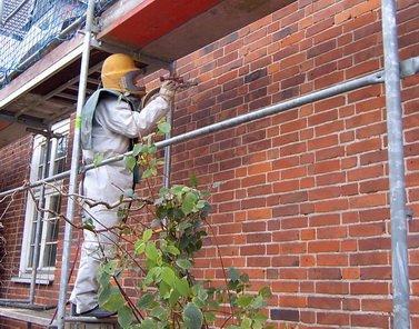 Fassadenreinigung-Schutz
