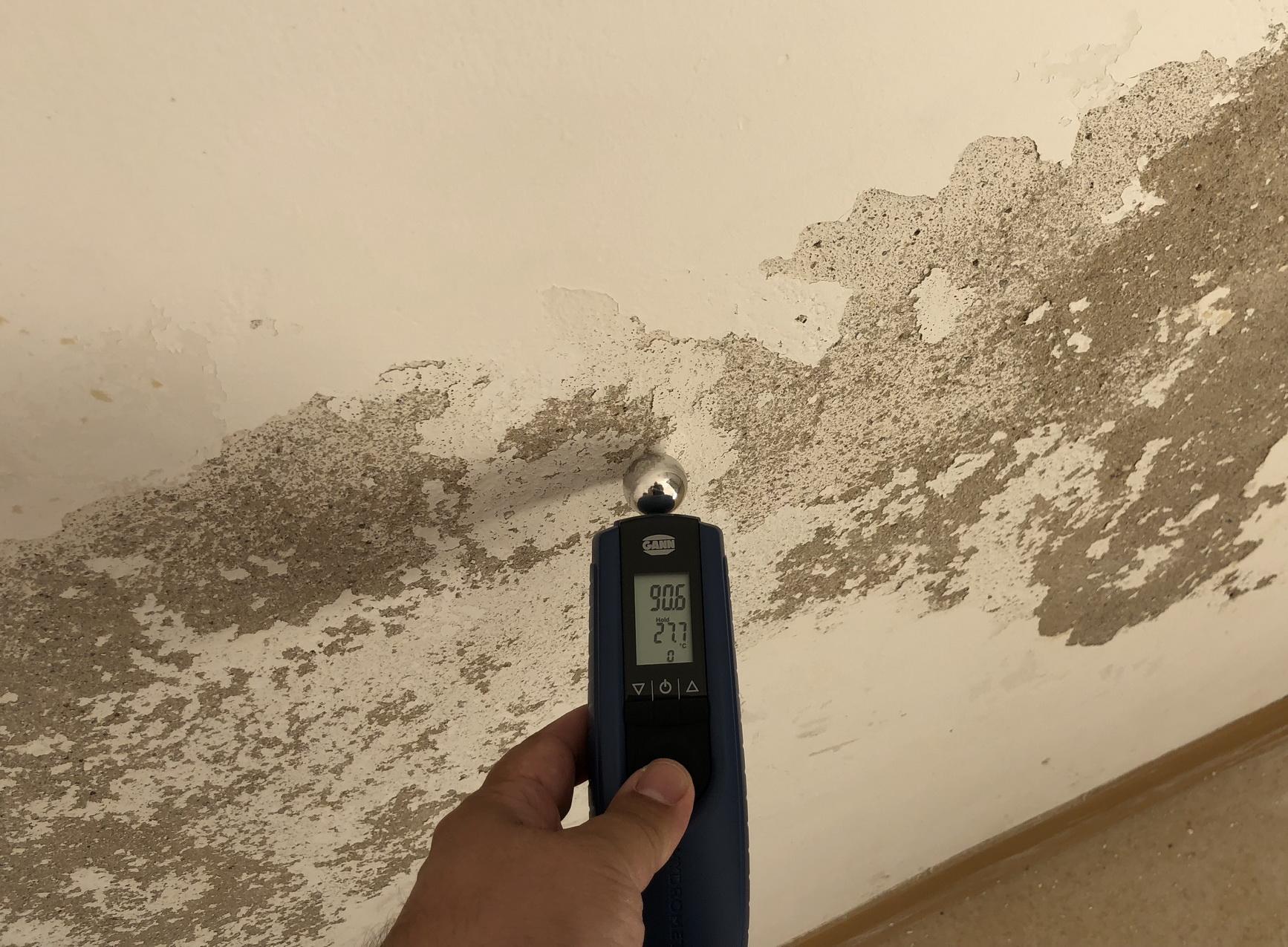 nasse wand was tun in einer wohnung nitrat kellerwand mit putz und farbe durch feuchte. Black Bedroom Furniture Sets. Home Design Ideas