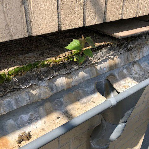 Terrassensanierung Zustand 2